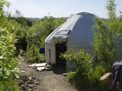 Yurt at Georges woodland