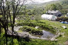 Laya Point Permaculture