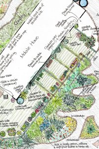 Permaculture Design Support Intensive