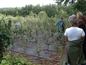 Agroforestry Research Trust site visit