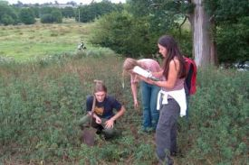 Students studying a landscape profile